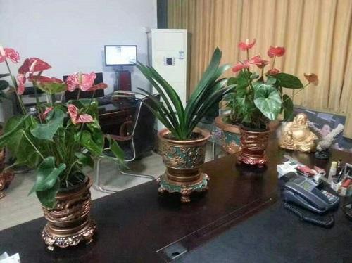 吉林藝術花盆