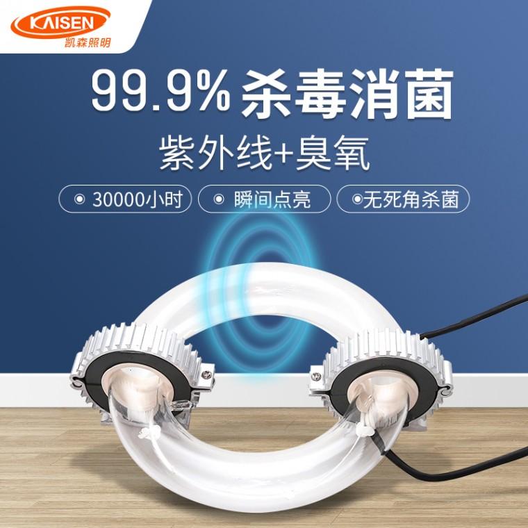 紫外线环形灯管80-100w