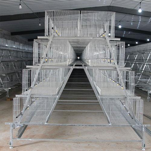 福建蛋雞籠